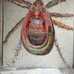 Bug 15